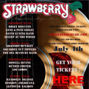 StrawberryFlashSale1JPG (800x800)